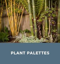 View Plant Palettes